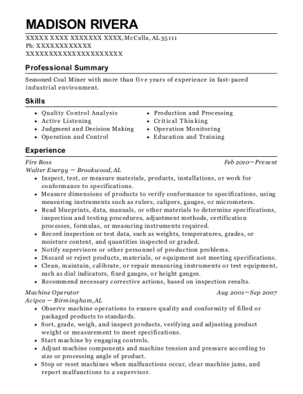 Walter Energy Fire Boss Resume Sample - Mccalla Alabama | ResumeHelp