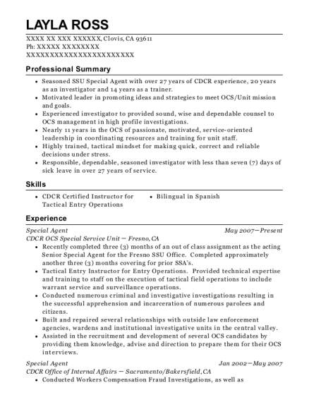 best special agent resumes