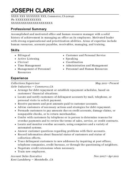 Elegant View Resume. Collections Supervisor