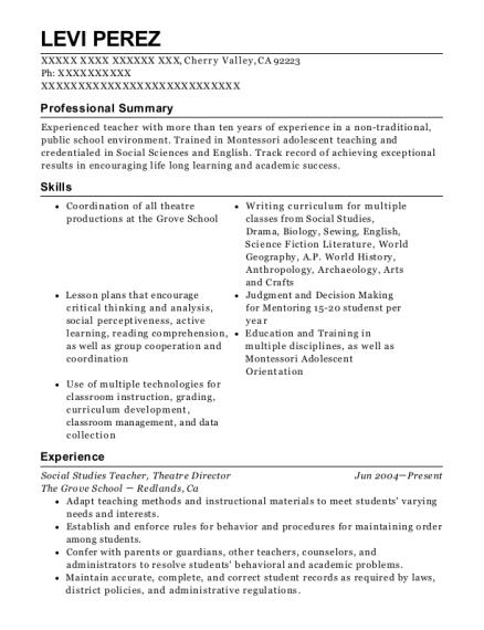 best theatre director resumes resumehelp