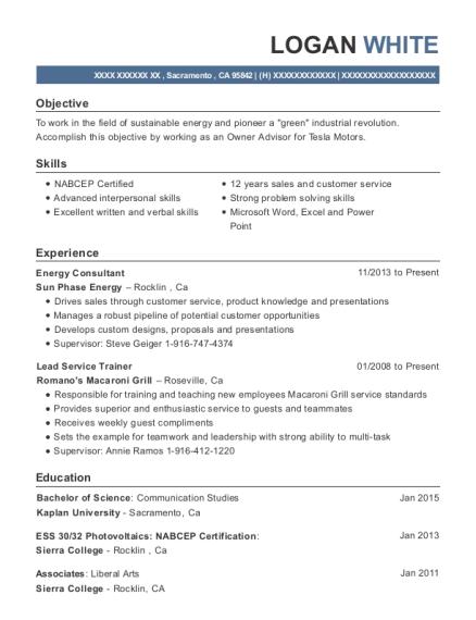 Best Energy Consultant Resumes Resumehelp