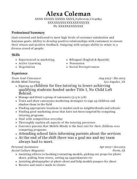 canvasser resume