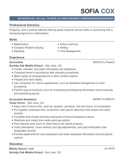 Best Accountant Assistance Resumes | ResumeHelp