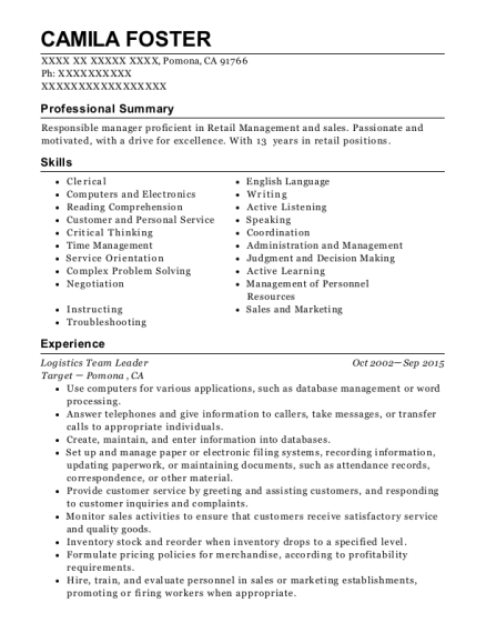 It Team Lead Resume Sample - nyustraus.org - Exaple Resume And Cover ...