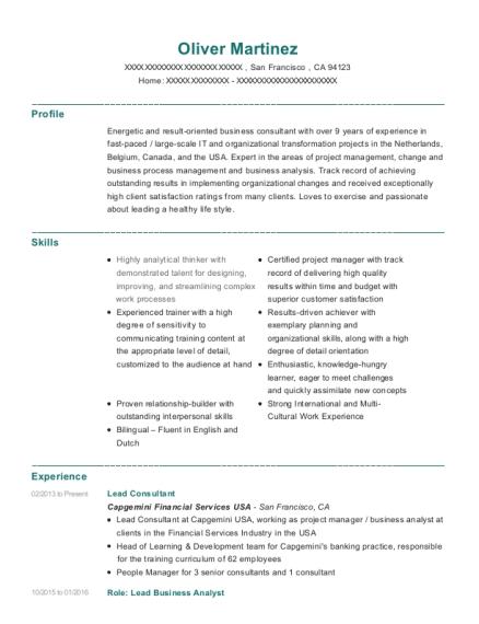 Best Lead Consultant Resumes | ResumeHelp