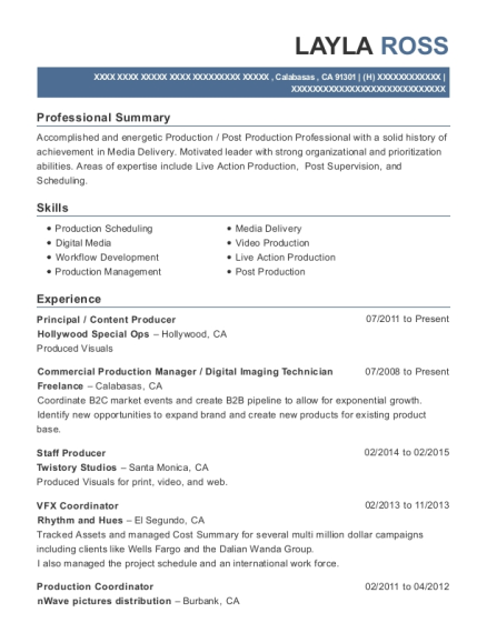 vfx resume samples