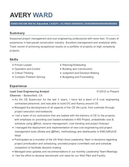 Best Lead Cost Engineering Analyst Resumes | ResumeHelp