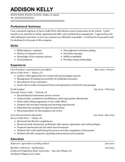 best loan documentation specialist resumes resumehelp - Sample Loan Documents