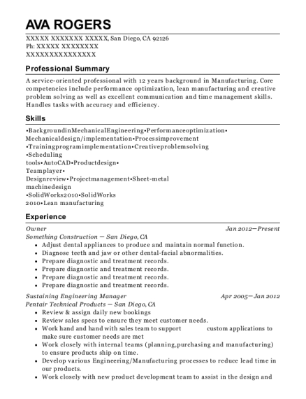 Best Sustaining Engineering Manager Resumes   ResumeHelp