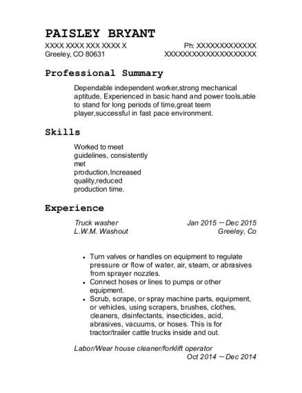 paisley bryant - Resume For Heavy Equipment Operator