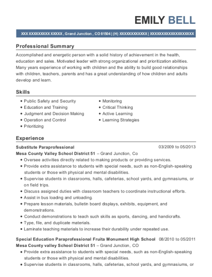 View Resume Substitute Paraprofessional