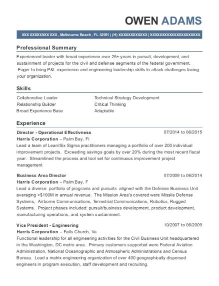 Best Vice President Engineering Resumes | ResumeHelp