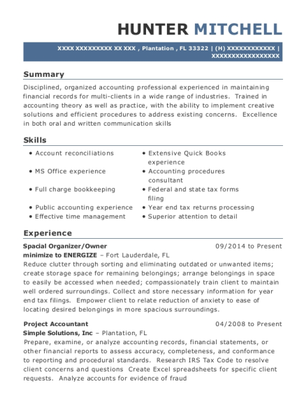 project accountant resume