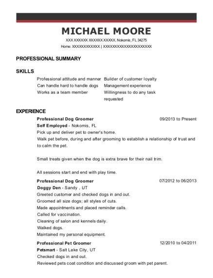 best professional pet sitter resumes resumehelp