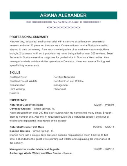 best dive master resumes resumehelp