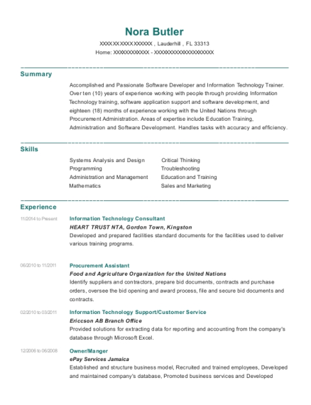 Heart Trust Nta Information Technology Consultant Resume Sample