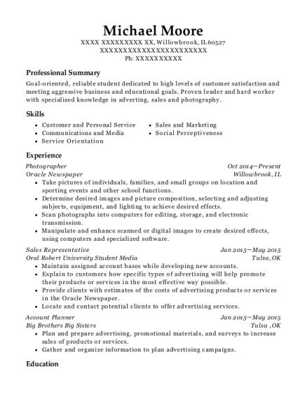 Best Account Planner Resumes | ResumeHelp