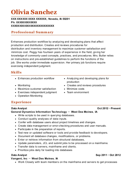production support analyst resumes