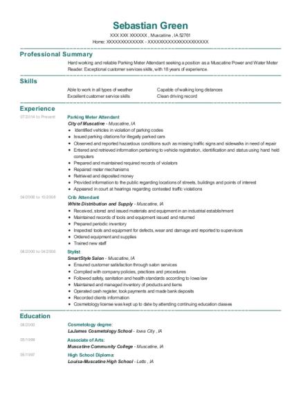 View Resume. Parking Meter Attendant
