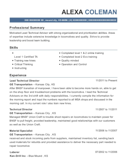 view resume lead technical director