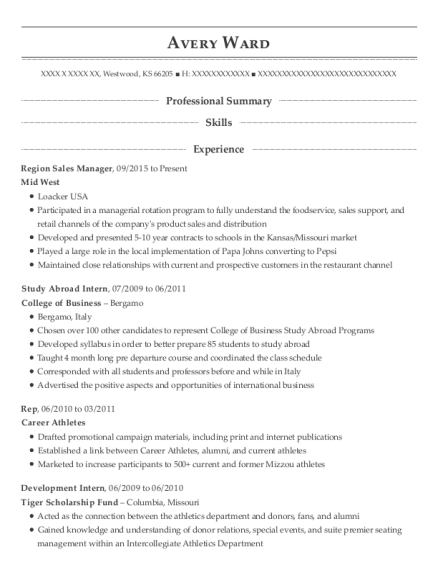 Best Region Sales Manager Resumes Resumehelp