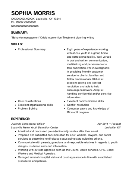 youth counselor resume