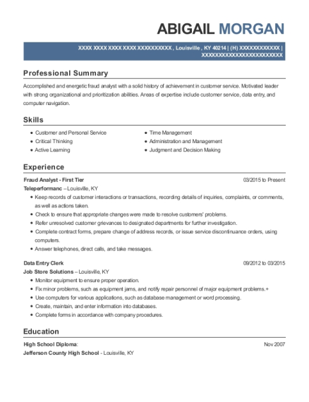 Great View Resume. Fraud Analyst ...