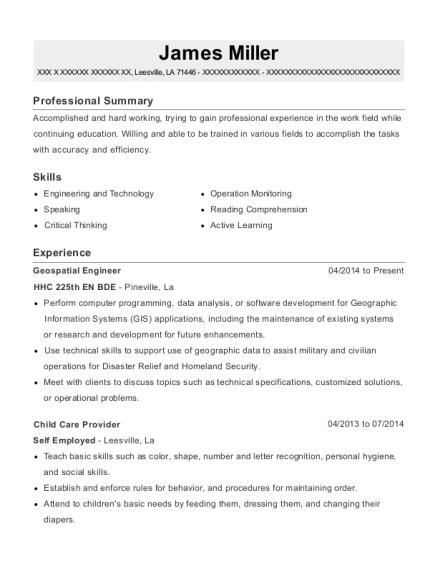 Best Geospatial Engineer Resumes | ResumeHelp