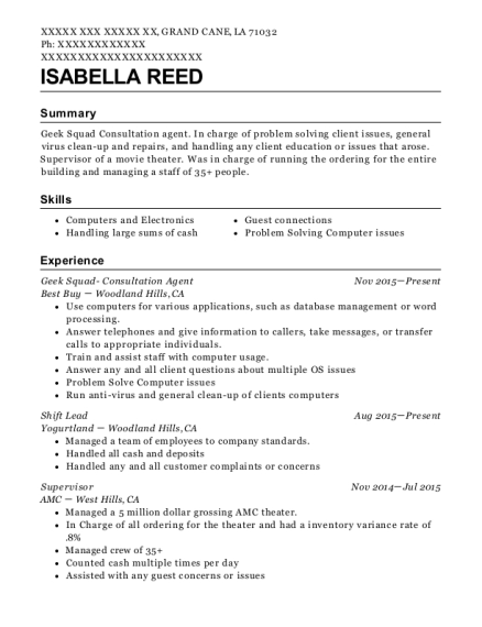 best buy geek squad- consultation agent resume sample