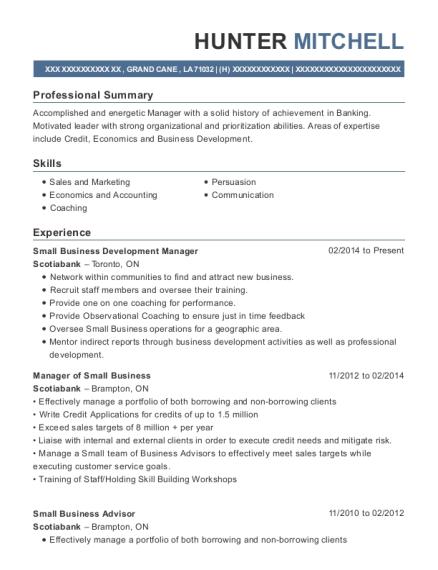Best Small Business Advisor Resumes | ResumeHelp