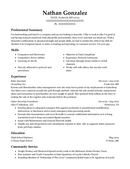 Best Cyber Security Consultant Resumes Resumehelp