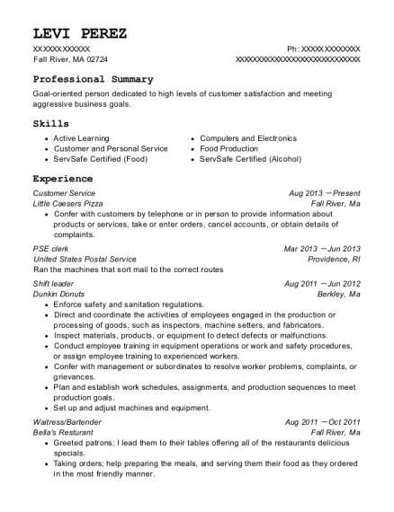 United State Postal Service Pse Clerk Resume Sample Paterson New