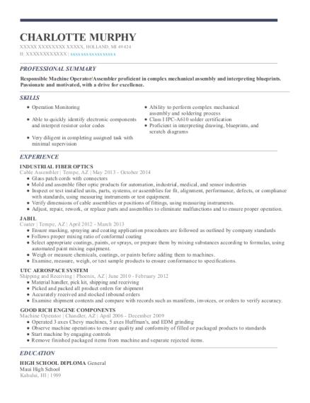 Michigan resume help