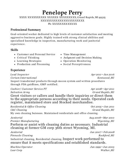 best residential office cleaning resumes resumehelp