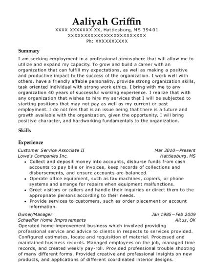 customer service associate ii accountant customize resume view resume - Lowe Customer Service Associate Sample Resume