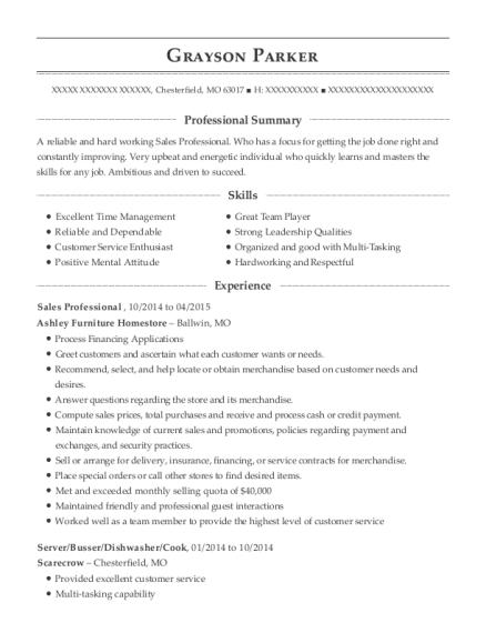 Porter Automotive Group Sales Professional Resume Sample - New ...