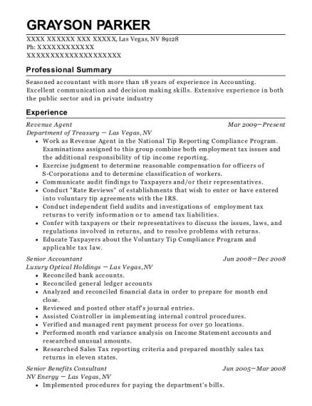 Best Revenue Agent Resumes   ResumeHelp