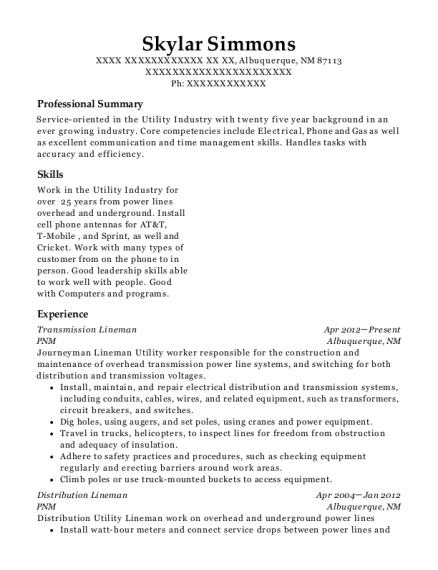 Resumes   ResumeHelp  Collections Job Description