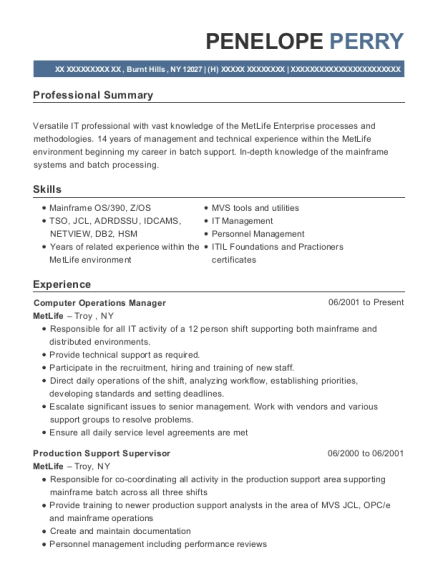 Best Production Support Analyst Resumes | ResumeHelp