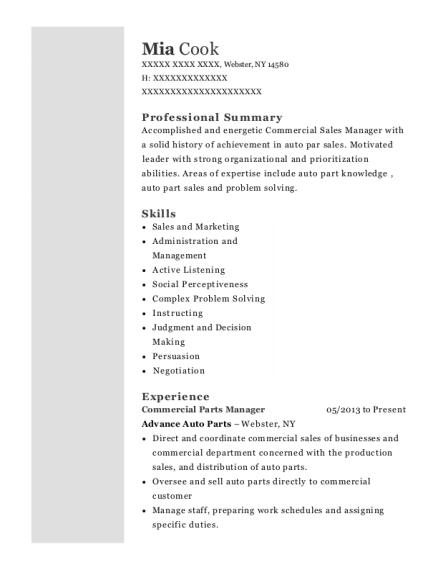 Best Commercial Sales Manager Resumes | ResumeHelp
