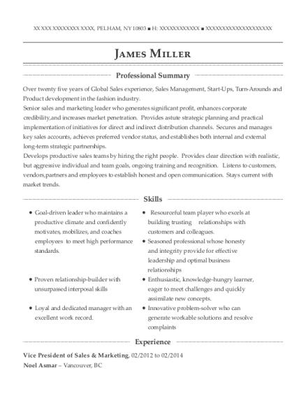 cities - Vice President Marketing Resume