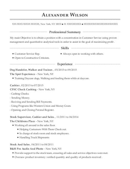 The Spot Experience Dog Handeler Resume Sample - New York New York ...