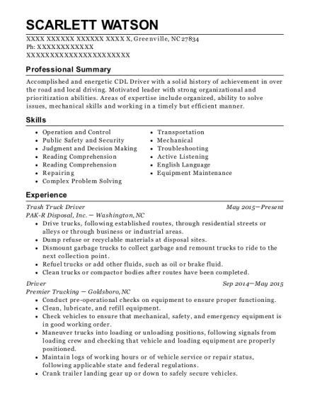 professional driver resumes