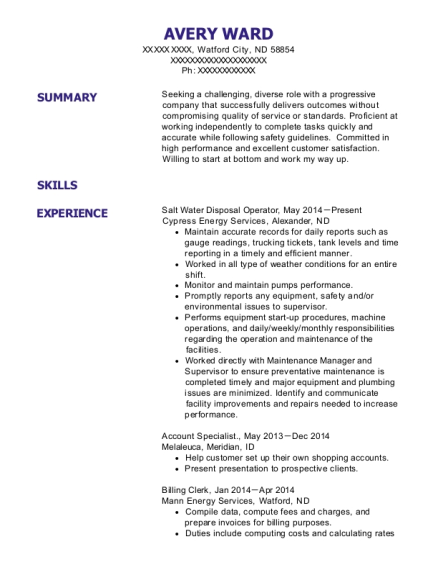 Cypress Energy Services Salt Water Disposal Operator Resume Sample ...