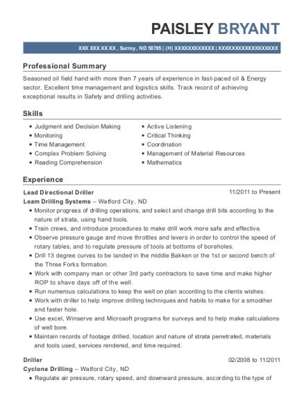 Best Lead Directional Driller Resumes | ResumeHelp