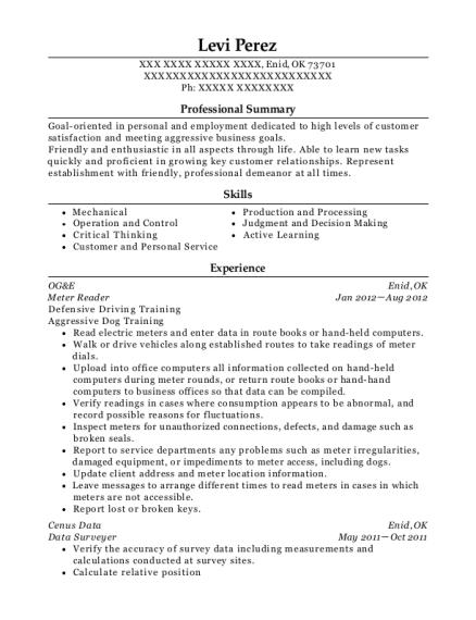 levi perez - Cabinet Maker Resume