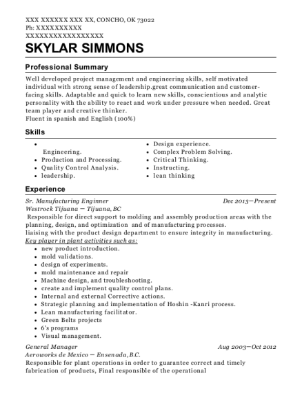 Best New Product Engineer Resumes | ResumeHelp