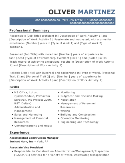 Best Project Accountant Resumes | ResumeHelp