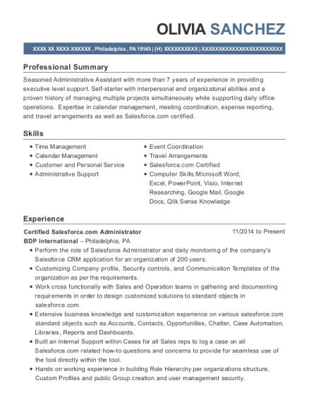 salesforce administration sample resume professional salesforce