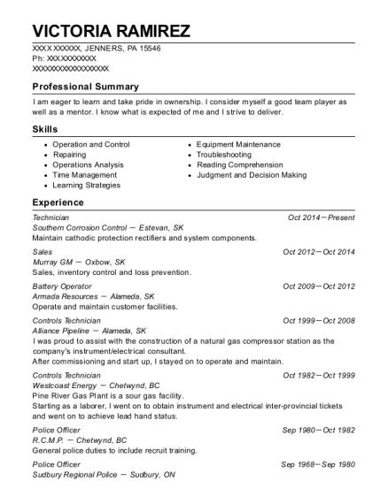 Best Controls Technician Resumes   ResumeHelp